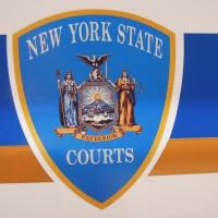 dscn1090-nys-court-logo